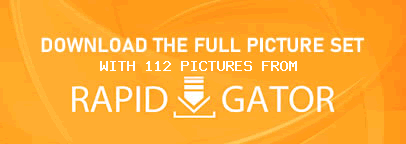 Download This Gallery!